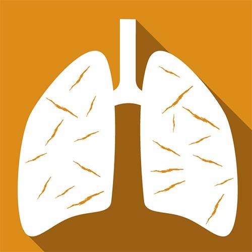 Online Course - Asbestos Awareness